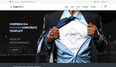 corporate wp theme